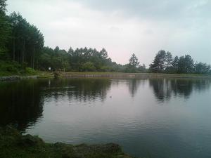 2010061101